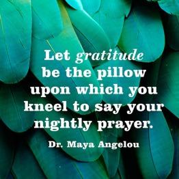 quotes-gratitude-pillow-maya-angelou-480x480